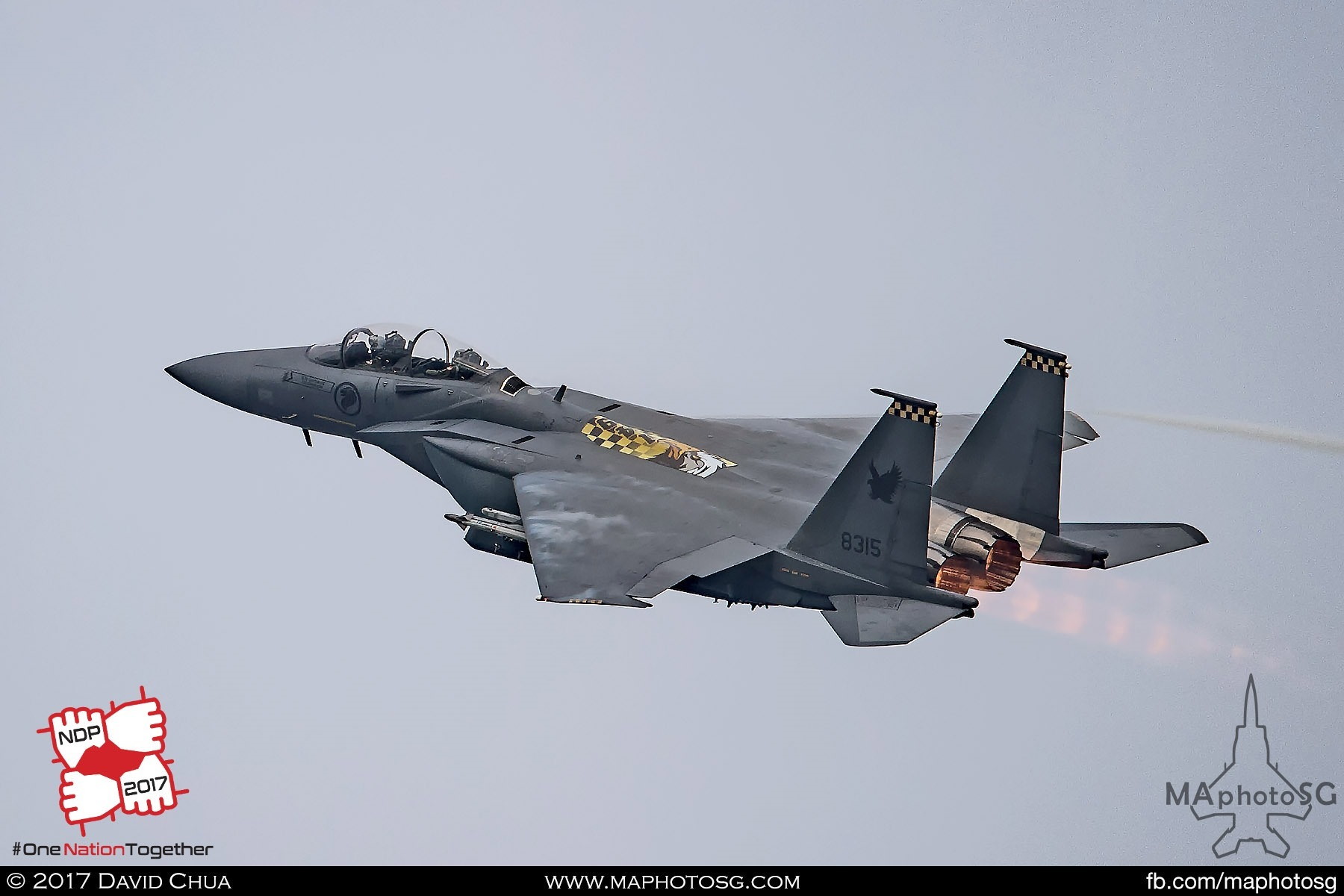 24. Lead aircraft of the bomb burst flown by Commanding Officer 149 Squadron, SLTC Goh Sim Aik and WSO CPT Desmond Tan in is this special 149SQN airbrake livery F-15SG.