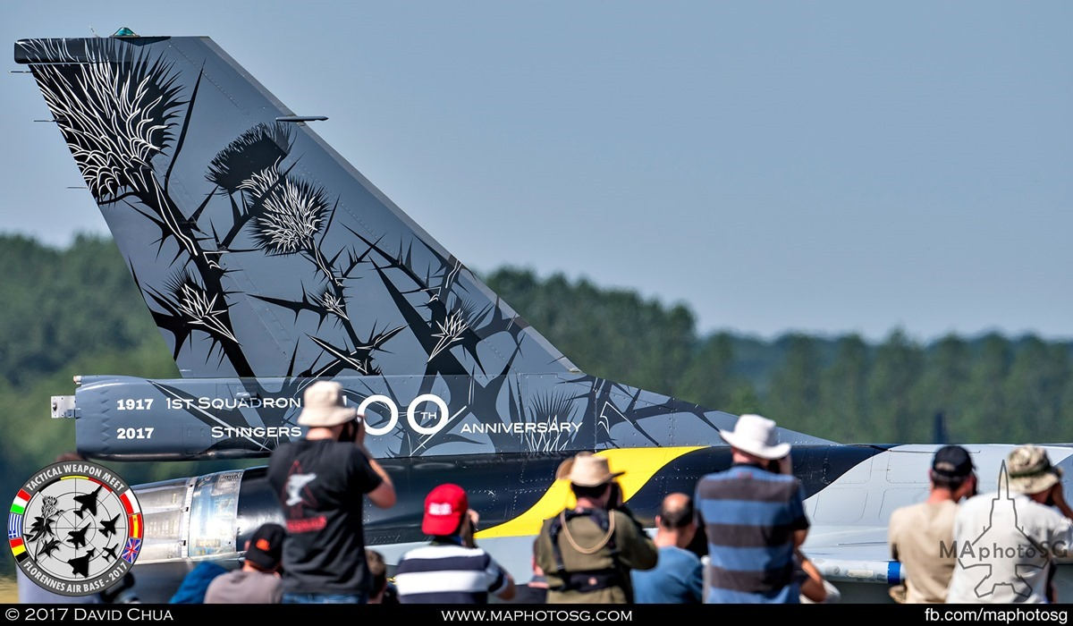 """3. Tail Fin details of the 100th Anniversary F-16A MLU of 1st Squadron """"Stingers"""" as it taxis past a line of spotters."""