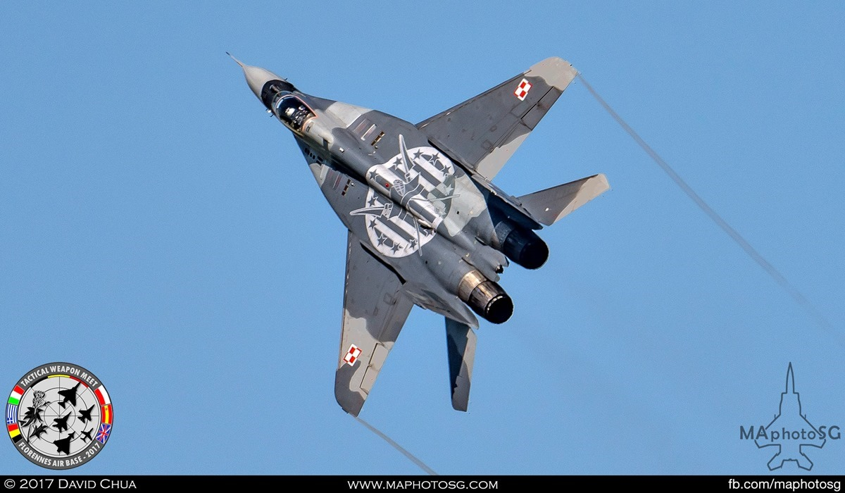 10. Polish Air Force MIG-29 Fulcrum (40) shows off it's topside artwork