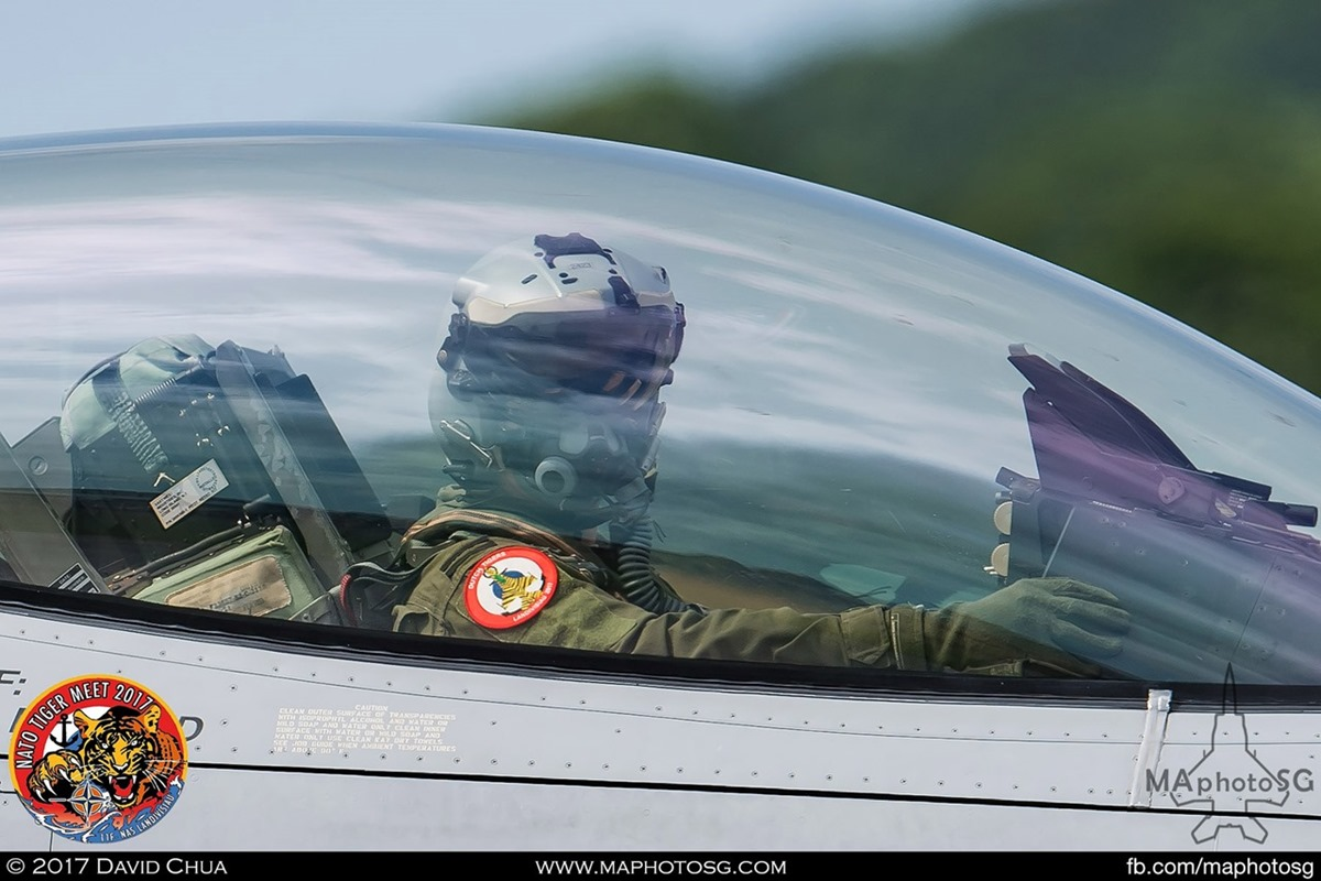 Royal Netherlands Air Force 313 Squadron F-16A MLU Fighting Falcon (J-015)