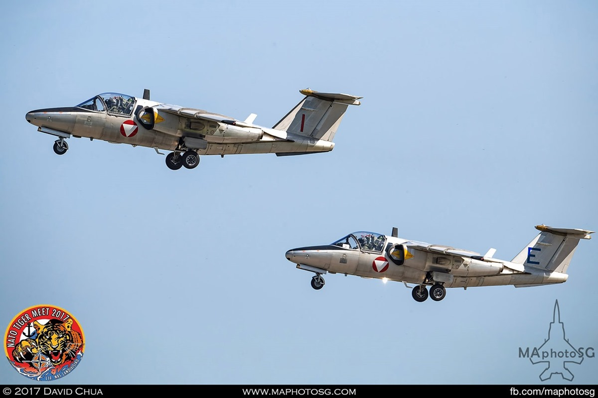 Austrian Air Force 1 Jet Trainer Squadron Saab 105Ö (I) and (E)