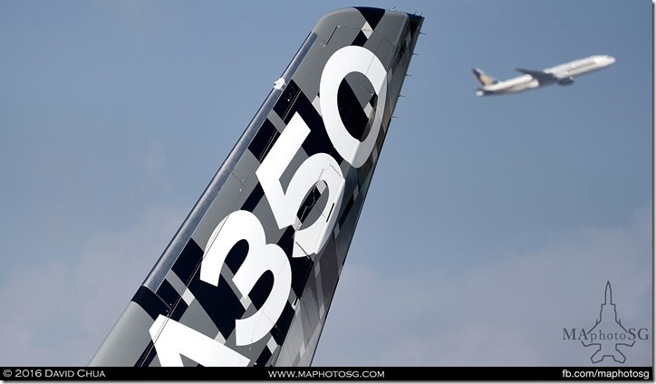 Carbon Tailfin of the demonstration A350