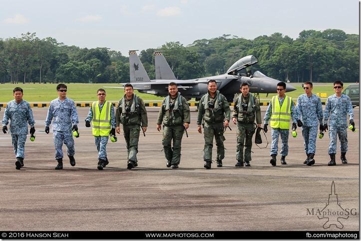 Second Team of Aerial Display Pilots