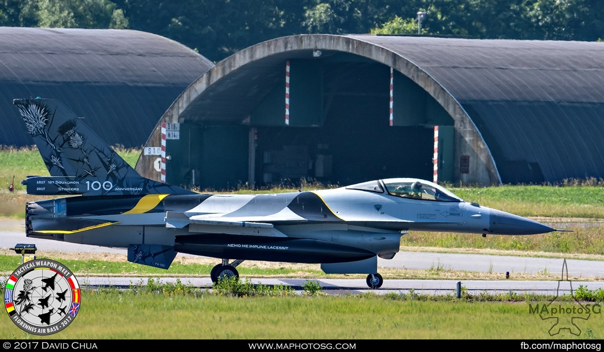 "2. 1st Squadron ""Stinger"" 100th Anniversary special livery F-16A MLU (FA-132)."