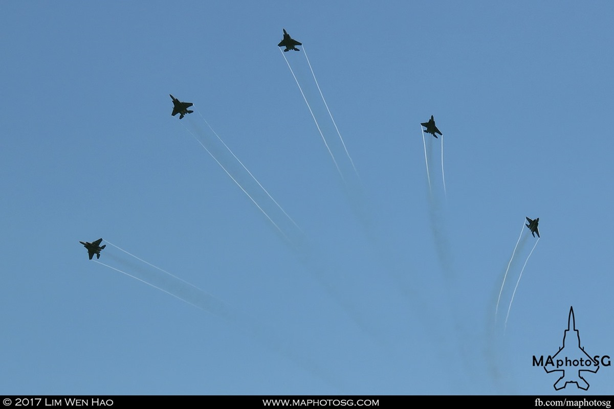 RSAF F-15SGs saluting the nations during the combined RSAF - TNII flypast.