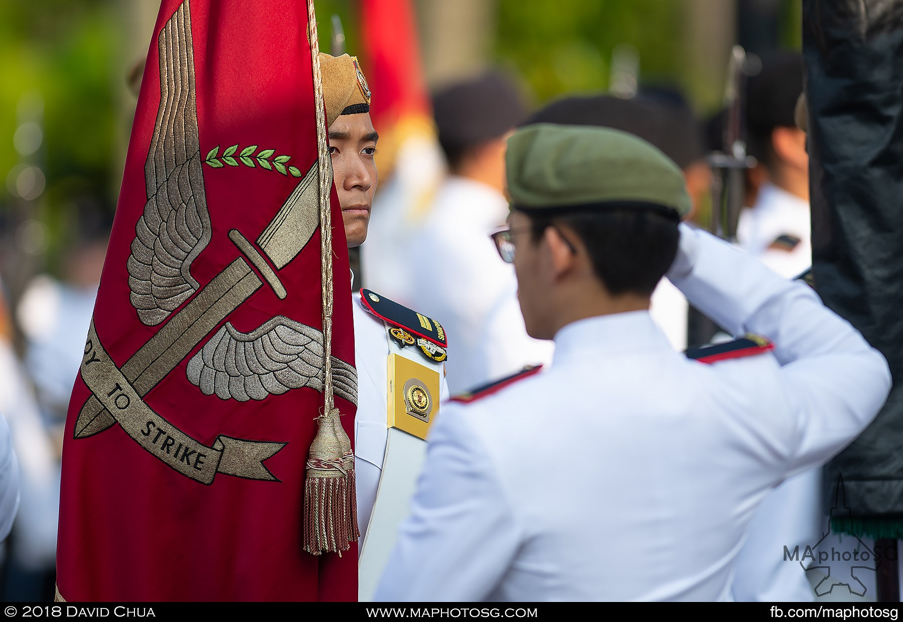 11. Regimental Colours of the Guards Formation.