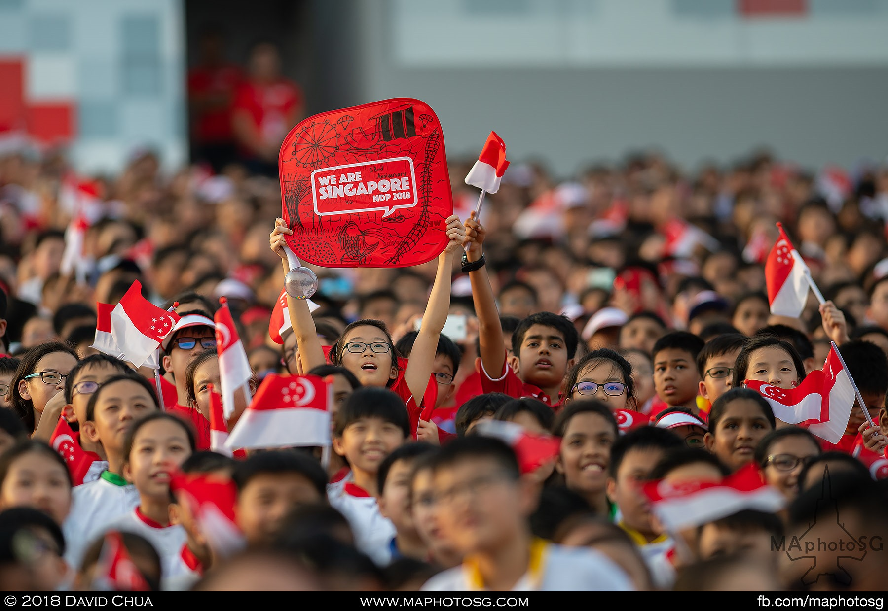 "15. A member of the 25000 strong audience holds up the ""We Are Singapore"" placard."