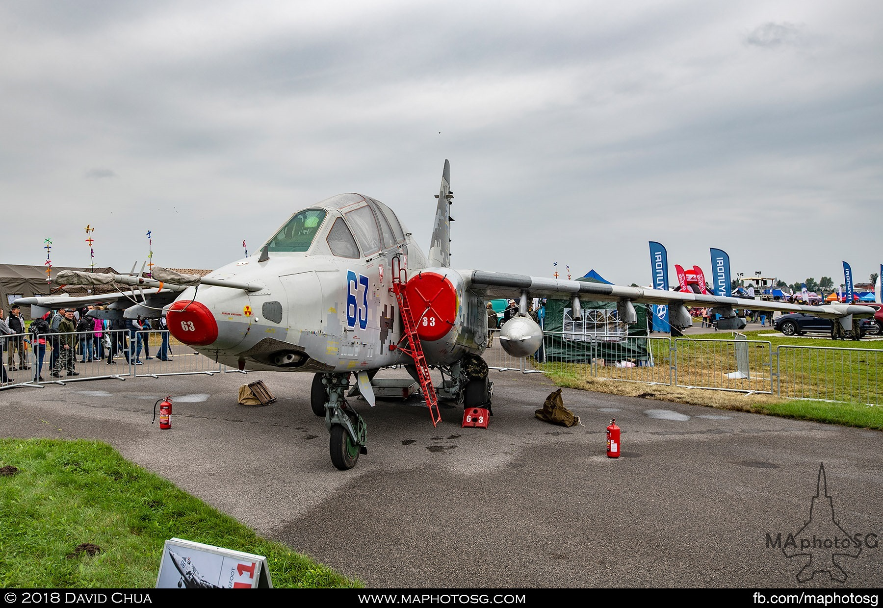 08. Ukranian Air Force Su-25 Frogfoot at static display