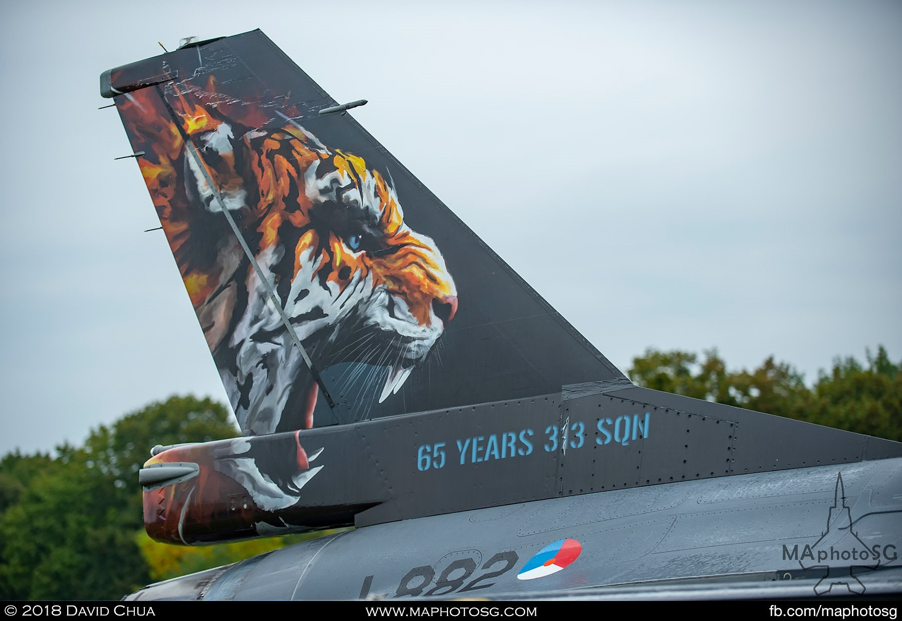14. Tailflash of the Royal Netherlands Air Force F-16 celebrating 65 years of 313 Squadron
