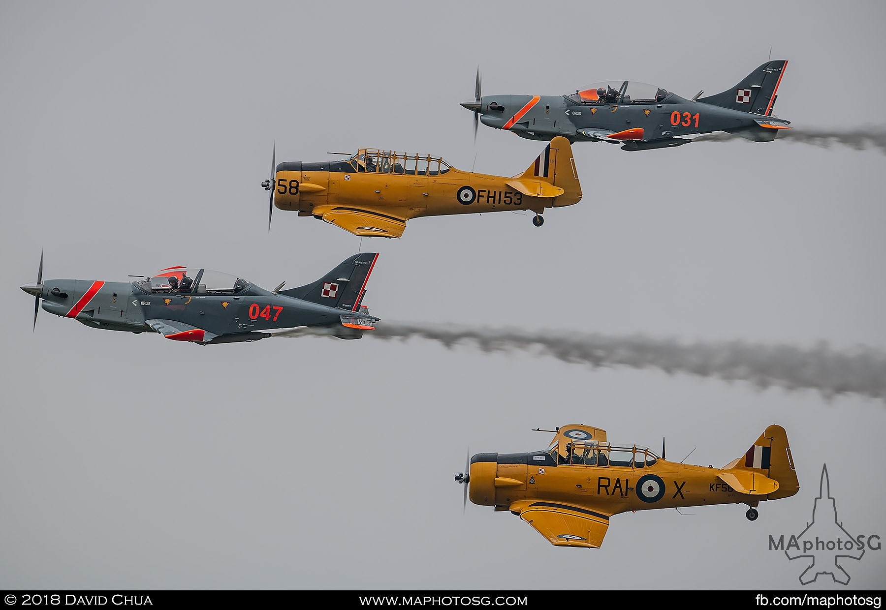 18. T6 Harwards and Team Orlik PZL-130s