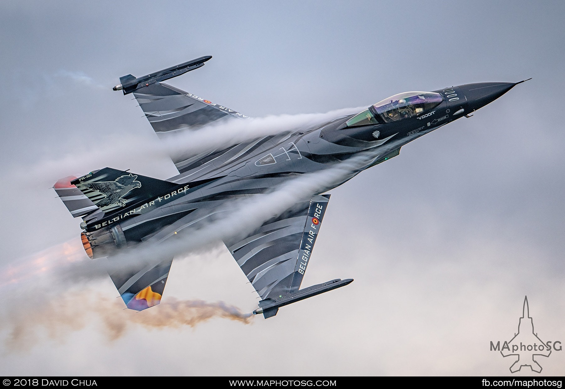 50. Dark Falcon of the Belgium Air Force F-16 Solo Display Team piloted by Vador